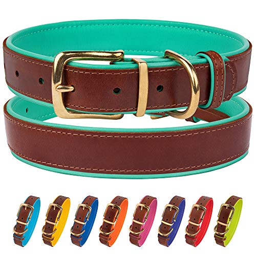 CollarDirect Leather Dog Collar Brass Buckle Soft Padded Puppy Small Medium Large Red Pink Blue Green Purple Yellow (Neck Fit 15″-17″, Mint Green)