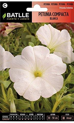 Semillas de Flores - Petunia Compacta blanca - Batlle
