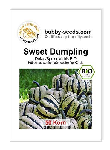 Sweet Dumpling Bio Kürbissamen von Bobby-Seeds 50 Korn