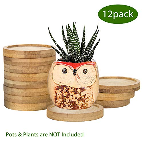 ZOUTOG Plant Saucer 25#039#039 Bamboo Planting Tray for Succulent Pots Round Plant Pot Saucers for Owl Pot with Hole Pack of 12 Plant amp Pot are NOT Included
