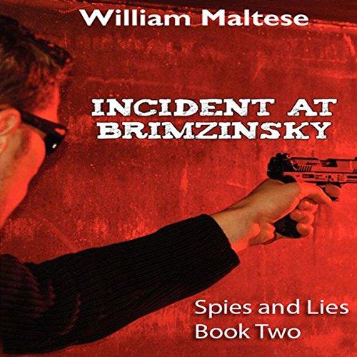 Incident at Brimzinsky audiobook cover art