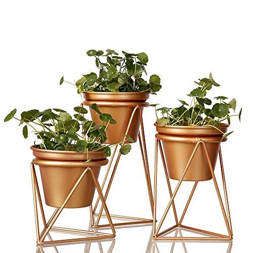 Oneriverspring40 Plant Pot Goud Bloempot Tuinplant Roestvrij Staal Bloem/Plant Vetplanten Container Bonsai Pot Thuis Tafel Decoratie Ornament