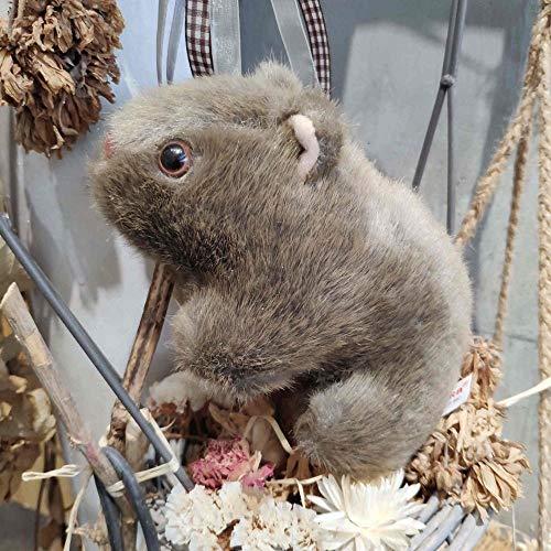 Winpavo Zierkissen Form Kissen Kopfkissen 18-28 cm Simulation Wombat Plüschtier Gefüllte Tierwelt Meerschweinchen Cavia Maus Puppe Simulation Kissen-24Cm