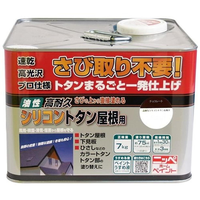 ブレース怠惰強調する高耐久シリコントタン屋根用 7kg