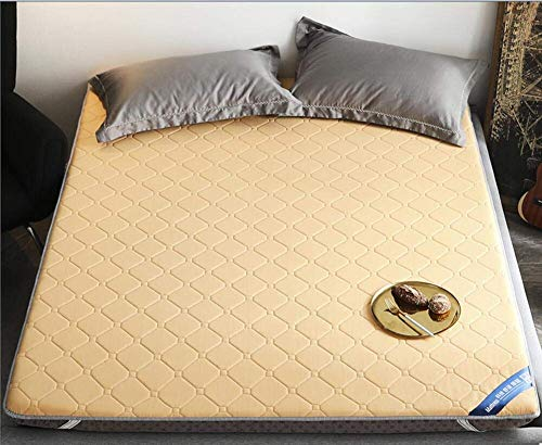 REXUN Padded Mattress,Antibacterial Single Double Tatami Mattress,For Student dormitory Family room-C 90x200cm(35x79inch)