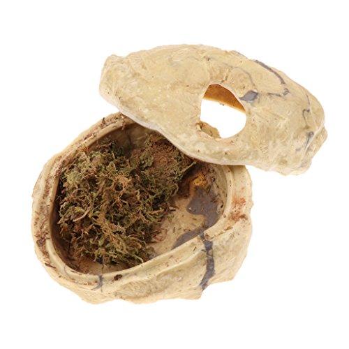 petsola Schlangenhöhle Reptilien Höhle Terrarium Dekoration Zubehör - M