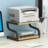 PUNCIA Office Desktop-Laser-Multifunktionsdrucker Kopierer Scanner Regalständer Rack mit Anti-Rutsch-Pads für Desktop-Organizer Ablagefach Doppelstock für Mikrowellen-Topfpflanzen (Schwarz)