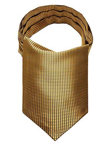 HISDERN Polka Dot Cravat Ascot Tie for Men Wedding Cravat Scarf gold