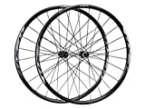 Shimano Non-Series WH-RX31 Wheelset-Front and Rear