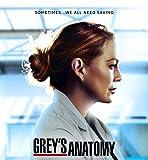 Greys Anatomy Season 17 35cm x 38cm 14inch x 15inch TV Show
