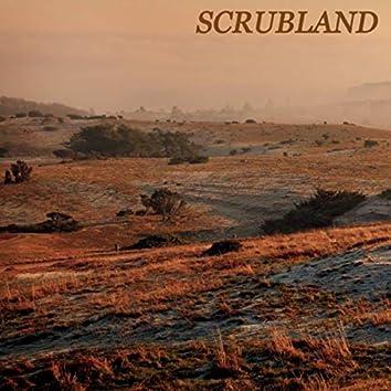 Scrubland