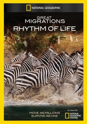 Great Migrations: Rhythm Baltimore Mall of Life Discount mail order