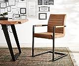 Küchenstuhl Earnest Vintage Freischwinger Design Stuhl (Braun, Gestell Metall Schwarz)