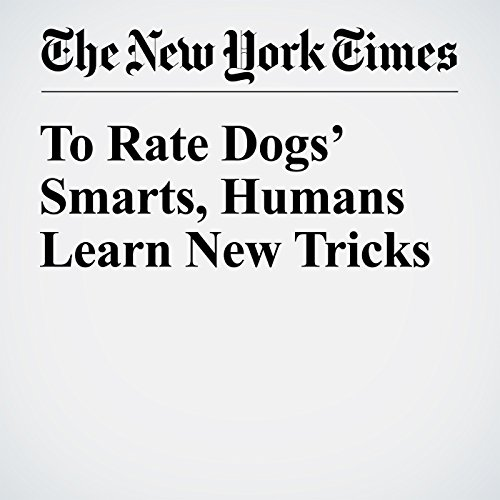 To Rate Dogs' Smarts, Humans Learn New Tricks copertina