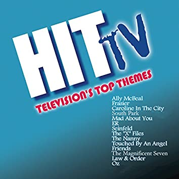 Hit TV: Television's Top Themes