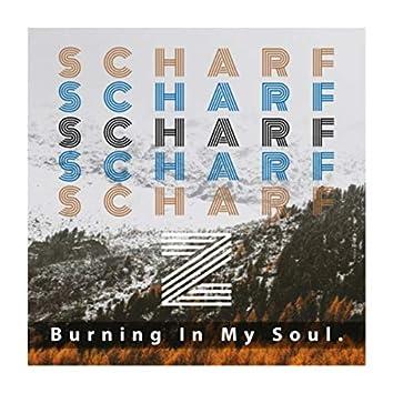 Burning In My Soul .