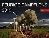 Dampfloks - Kalender 2019 - Heye