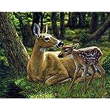 5D DIY diamante pintura Animal Elk diamante punto de cruz conjunto mosaico arte imagen Mural diamante pintura A9 30x40cm