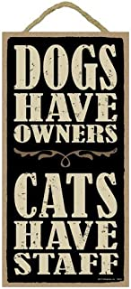Aianhe Dogs Have Owners, Cats Have Staff 5