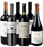 Atlantik Weine, Südamerika Premium Weinpaket mit Rotwein aus Uruguay, Tannat Merlot Cabernet Franc und Pinot Noir aus drei Weinregionen Uruguays (6 x 0,75l)