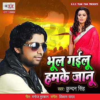 Bhool Gailu Hamke Jaanu