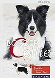 Border Collie: Charakter, Erziehung, Gesundheit. (Hunderassen)