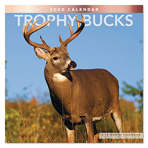 2020 Trophy Bucks Wall Calendar (LME2151020)