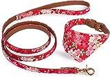 Puccybell Collier pour Chien Fleur avec Toile et Laisse pour Chien (1,2 m) en kit, Collier pour Bandana et Laisse pour Petits et Moyens Chiens HLS004 (M, Rouge)
