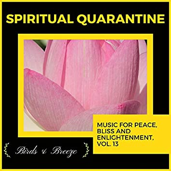 Spiritual Quarantine - Music For Peace, Bliss And Enlightenment, Vol. 13