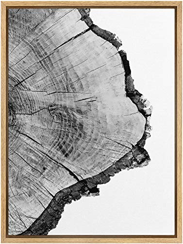 SIGNWIN Framed Canvas Print Wall Art Detailed Wood Rings of Tree Nature Wilderness Photography Realism Rustic Dramatic Grey Black and White for Living Room, Bedroom, Office - 16'x24' Natural