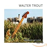 Songtexte von Walter Trout - Common Ground