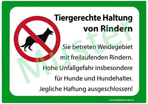 Landkaufhaus Mayer Weide Warnschild *Tiergerechte Haltung von Rindern* 29 x 21cm, Warnschild,Weidezaun,Weidegebiet,