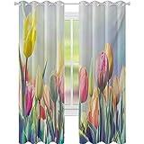 cortinas de dormitorio, Tulipanes Cama de Flores en el Parque Sereno Paisaje Felicidad Fresca Primavera Ambiente Imagen, W52 x L63 Cortinas para el cuarto de bebé, Multicolor