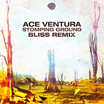 Stomping Ground (Bliss Remix)