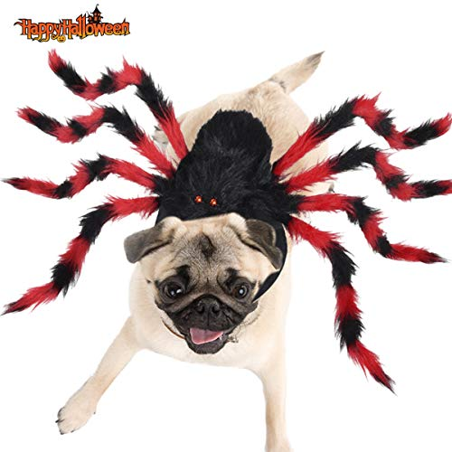 Yoochee Halloween Dog Spider Costumes - Pet Costume Spider Halloween Pet Cosplay Dog Cat Costumes Apparel for Medium Small Dogs Cats Outfit Dress Up Accessories- Red and Black (Medium) Review