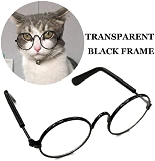 Best eyeglasses for cats Reviews