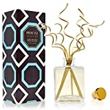 HOUZZ Interior Cinnamon Spiced Vanilla Reed Diffuser Oil Set – Cinnamon, Clove, Almond and Vanilla – Beautiful Display for Your Holiday Decor – Natural Essential Oil Room Scent Infuser Sticks