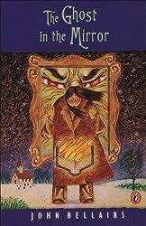 The Adventures of Lewis Barnavelt Series Book #4 (AFFILIATE)