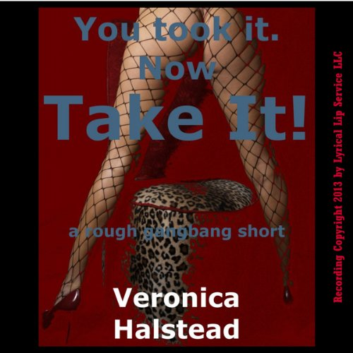 You Took It. Now Take It! A Very Rough Gangbang Short cover art