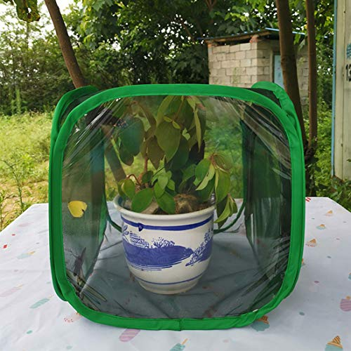 MYYINGELE ButterflyButterfly Insect Net, Collapsible Insect and Butterfly Habitat Net Terrarium Pop-up Insect Mesh Cage for Kids, M