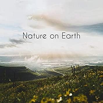 Nature on Earth - Beautiful Ambient Music with the Sounds of the Nature of Our Planet
