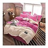 NYKK Juego de sábanas de 4 Piezas Queen Size 4 Hoja Piece Set Polar de Coral lecho Suave y cómodo con Textura de Rayas Juego de Tapas (Color : Pink, Size : 2.0m (6.6 Feet Bed))