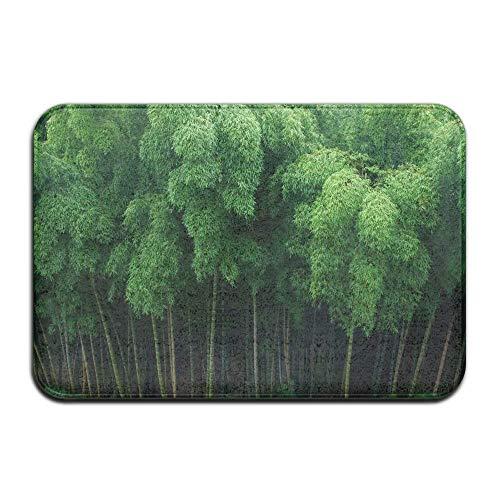 Uosliks - Alfombra de goma antideslizante de bambú verde para interiores y exteriores, 80 x 50 cm