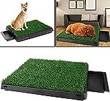 loikero123 – Toilette per cani con erba sintetica, toilette per cuccioli, vasino per ani...