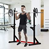 HOMCOM Barbell Rack Squat Dip Stand Weight Lifting Bench Press Home Gym Adjustable Multi-Use Station Fitness Workout Equipment