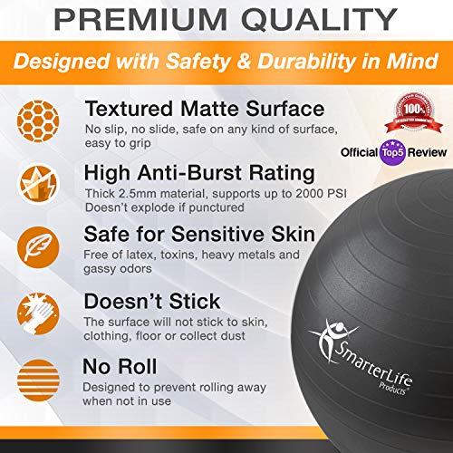SmarterLife Exercise Ball