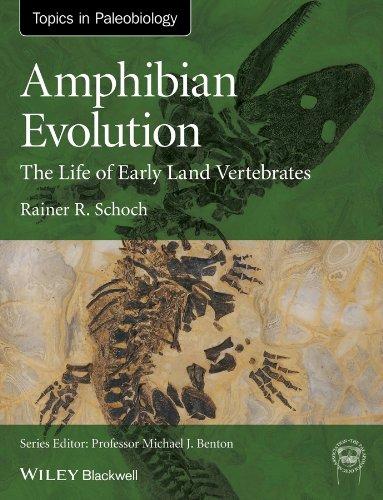 Amphibian Evolution: The Life of Early Land Vertebrates (TOPA Topics in Paleobiology) (English Edition)