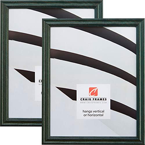 Craig Frames 200ASHGR 8 x 12 Inch Picture Frame, Green, Set of 2