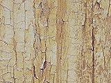 Fablon FAB13773 - Lámina adhesiva con diseño de árbol, color marrón