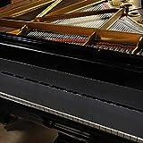 Immagine 2 beliof copri tasti per pianoforte